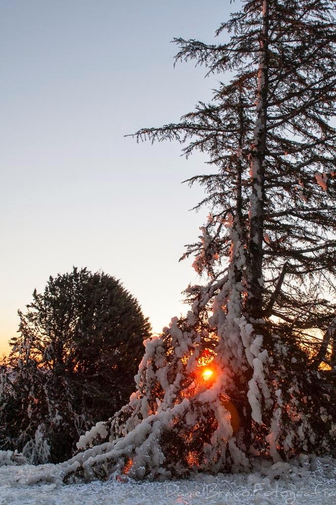 Navacerrada, presa, hielo, amanecer, frío, sol, sierra, montañas