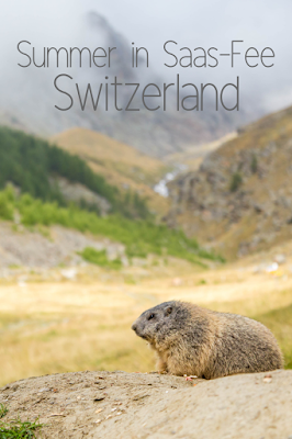Travel the World: Five fun things to do in Saas-Fee Switzerland in summer. Saas-Fee is in the Valais Matterhorn region of Switzerland. Things to do include traversing a via ferrata, hiking, visiting a glacier, riding a toboggan, and feeding marmots.