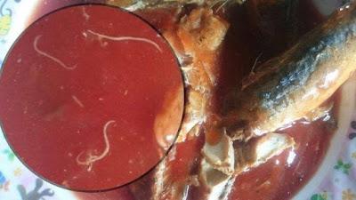 Cacing Parasit pada Sarden Tidak Berbahaya? Ini Penjelasan Para Ahli