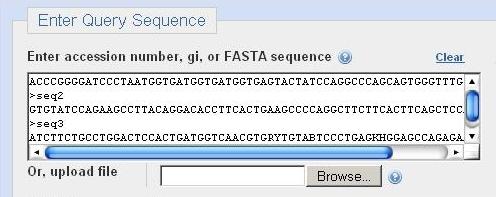 5 Server for Batch BLAST against NCBI database~ Bioinformatics Made