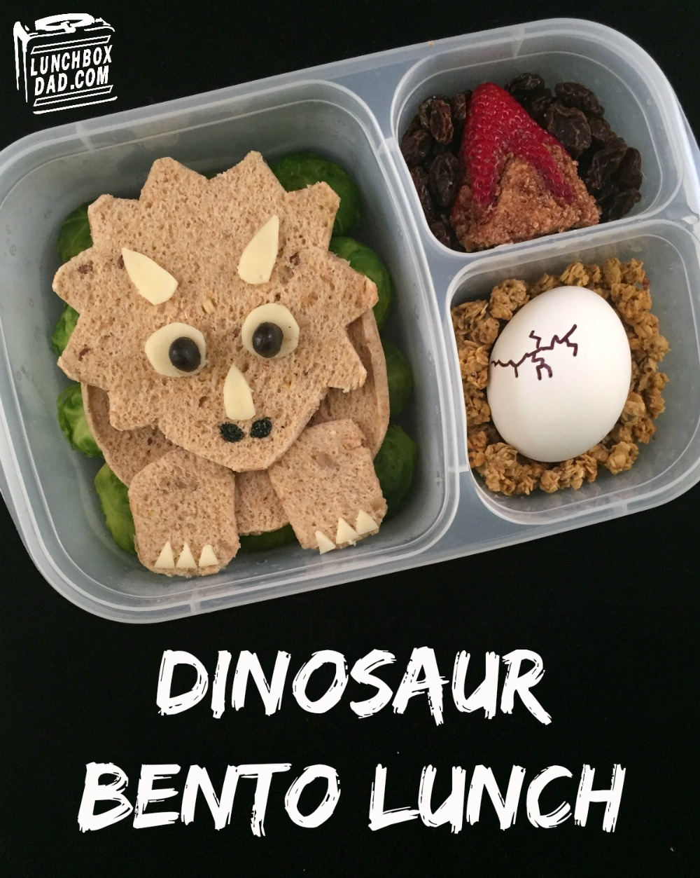 Dinosaur Triceratops Lunch