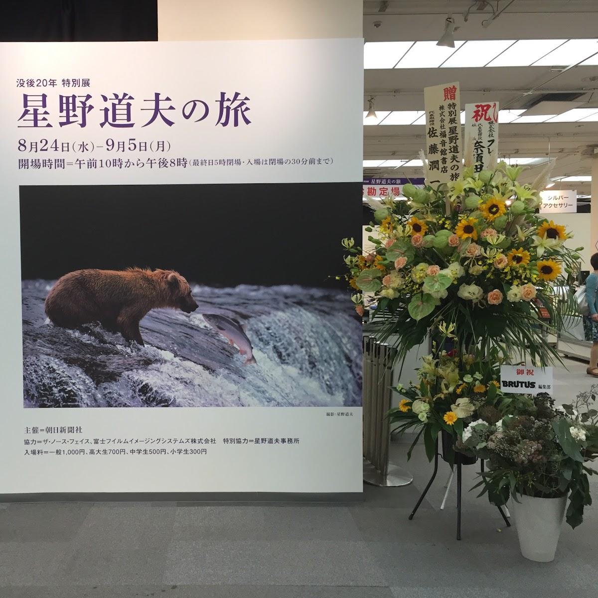 没後20年 特別展 星野道夫の旅 | 松屋銀座 | 2016-08 【鑑賞メモ】