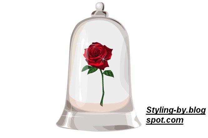 styling by umstyling gratis rose im glas von die sch ne. Black Bedroom Furniture Sets. Home Design Ideas