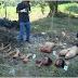 3 magkakapatid pinatay, hinalay at pinag chop chop ng kanilang tiyo