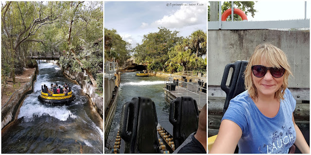 Florida - St. Pete Beach - Busch Gardens {EamK on Tour}