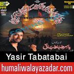 http://www.humaliwalayazadar.com/2015/10/yasir-tabatabai-nohay-2016.html