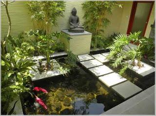 taman belakang rumah minimalis dengan kolam ikan