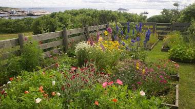 Las flores del Jardín de la Isla de Celia Thaxter