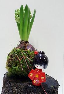 cursos y talleres de kokedama y bonsai en Bilbao