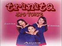 Trinita SRO Voice - PT. Sinkom Batam