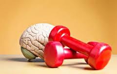 sérotonine-sport