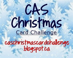Check out our other CAS Challenge