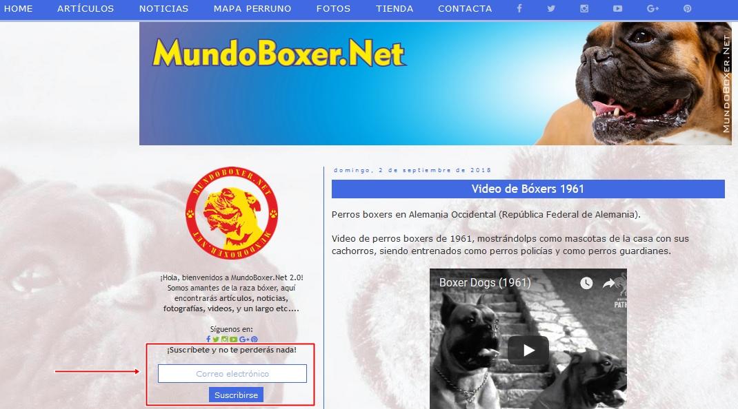 Calendario Perruno.Mundoboxer Net Calendario Mundoboxer Net 2019