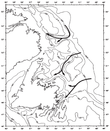 Fisheries Acoustic Survey Newfoundland Blog No 9 Of Cod And Second