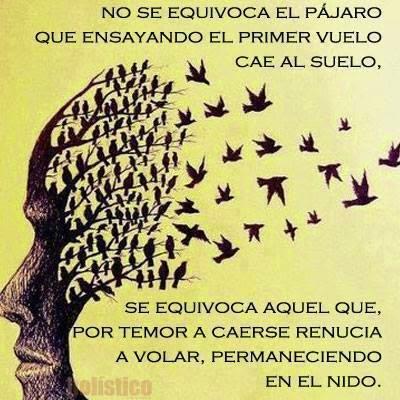 Iluminate Intelecto Frases Y Reflexiones