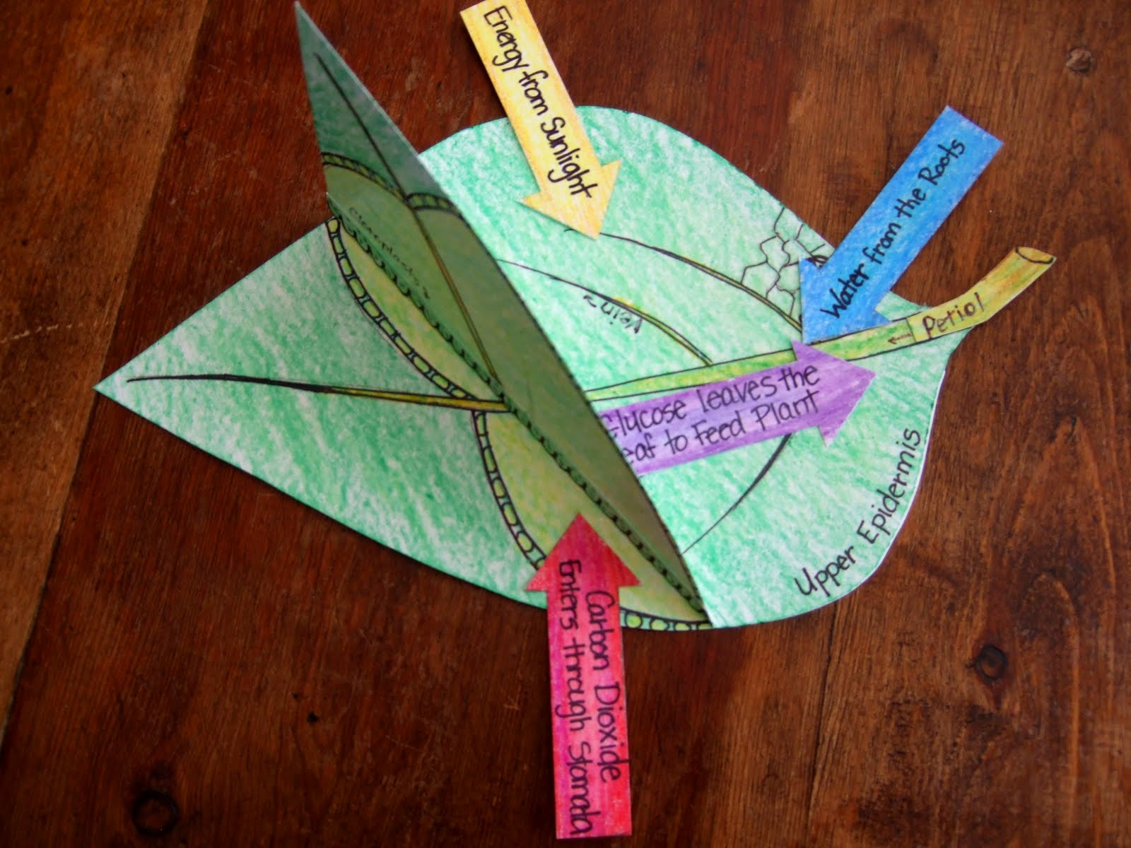 Pinterest Craft Projects For Kids