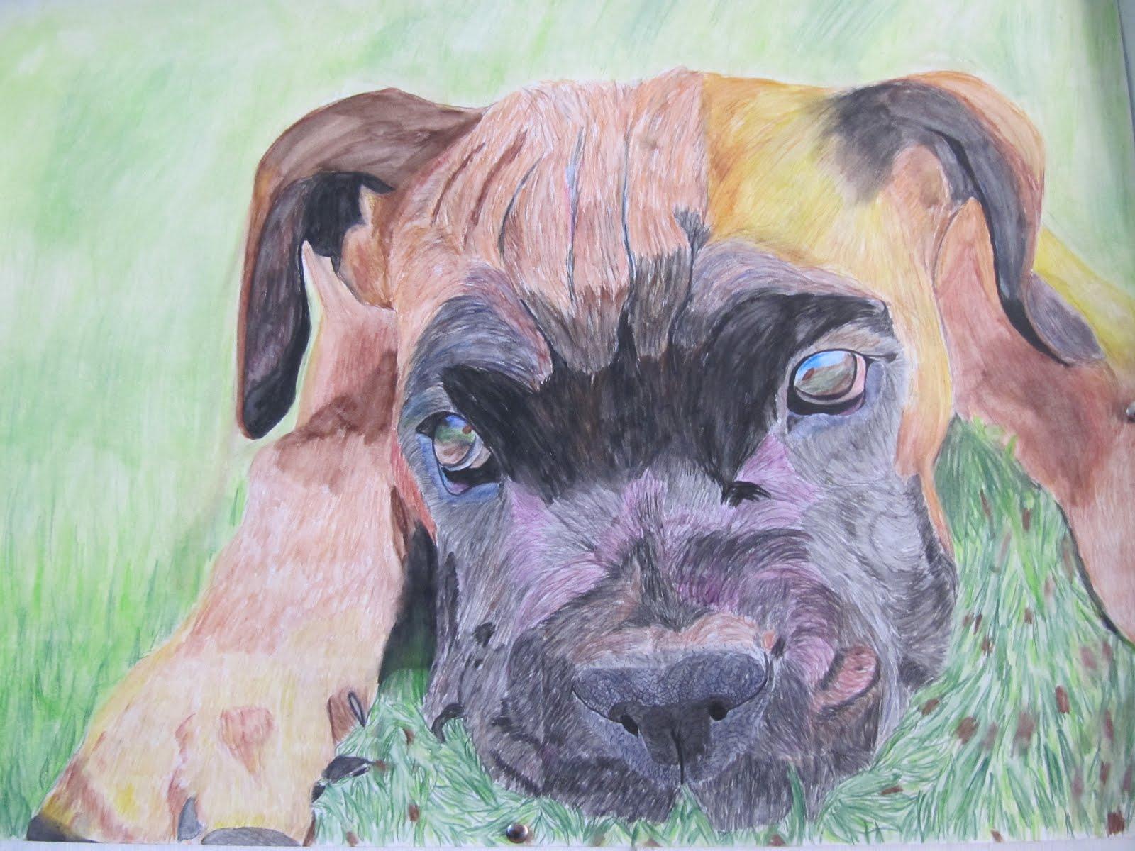 Trevi art gr11 pencil crayon textural drawings