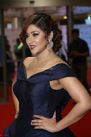 Payal Ghosh aka Harika in Dark Blue Deep Neck Sleeveless Gown at 64th Jio Filmfare Awards South 2017 ~  Exclusive 134.JPG