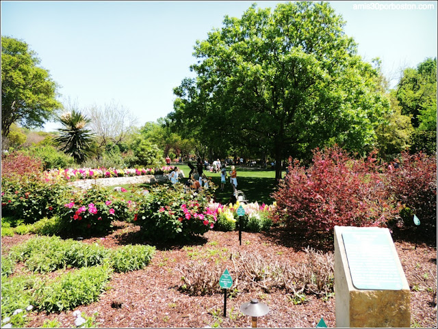 Dallas Arboretum & Botanical Garden: Color Garden