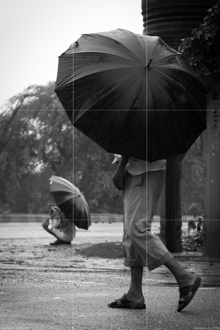 Rule of Thirds in Photography with 20 examples.