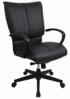 Eurotech Seating Louisville Series Office Chair
