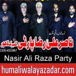 https://www.humaliwalyazadar.com/2018/10/nasir-ali-raza-party-nohay-2019.html