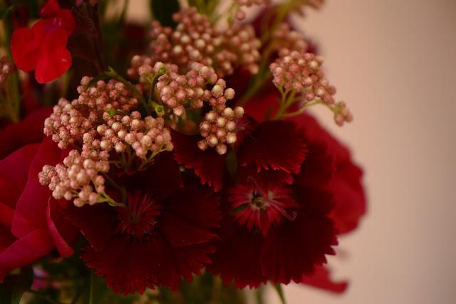monday vase, ranunculus, cutflower, ozothamnus, dianthus, small sunny garden, desert garden, amy myers
