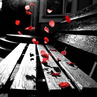 صور خلفيات ايباد رومانسية وورود حمراء