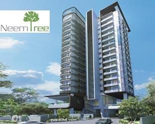 Neem Tree @ Balestier