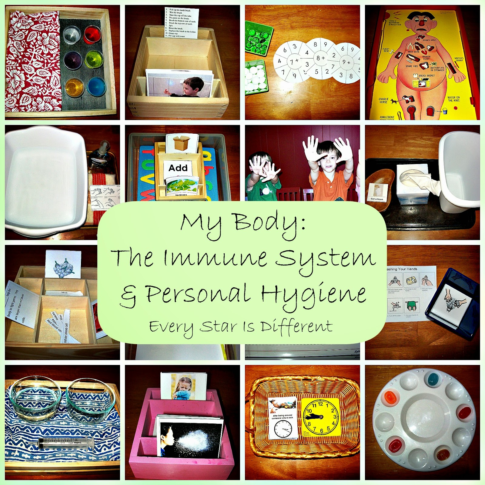 The Body: The Immune System and Personal Hygiene