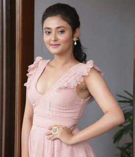 Megha Chowdhury Varma Teaser Launch Stills
