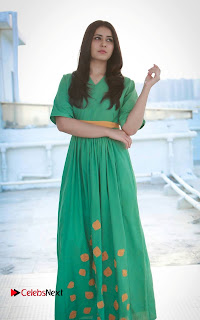Actress Raashi Khanna Latest Picture Shoot Gallery in Green Long Dress 0008