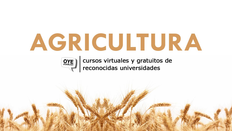 17 Cursos Universitarios Gratis De Agricultura Y Ganaderia