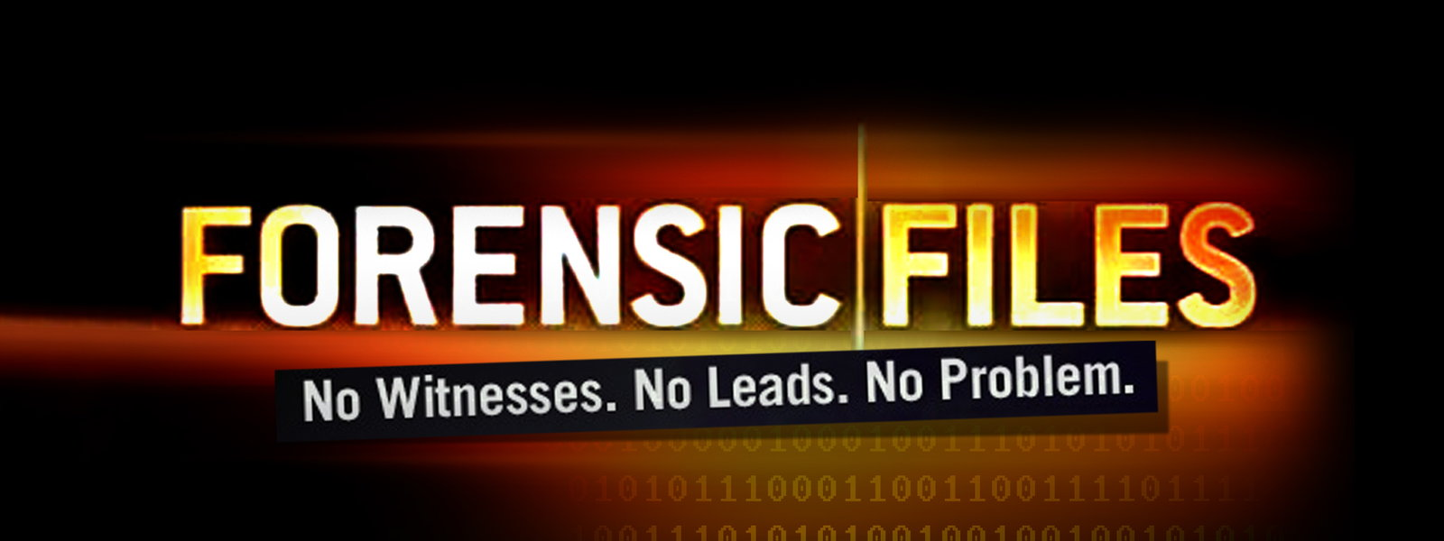 Image result for forensic files