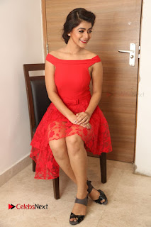 Yamini Bhaskar Latest Pictures in Red Dress at 100 Days of Love Movie Audio Launch ~ Celebs Next