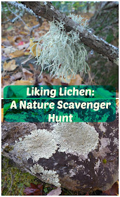 http://www.onlypassionatecuriosity.com/liking-lichen-nature-scavenger-hunt/