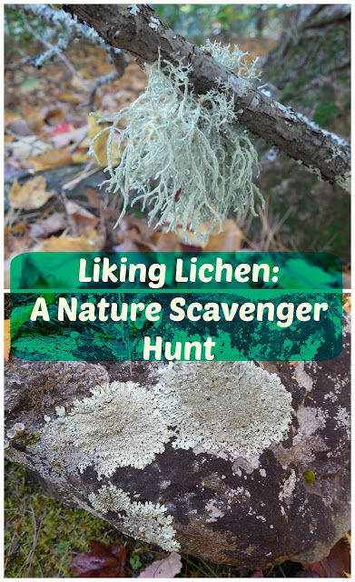 http://www.onlypassionatecuriosity.com/liking-lichen-nature-scavenger-hunt/