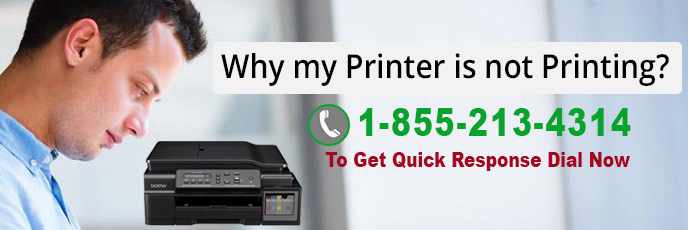 Why My Printer is not Printing?