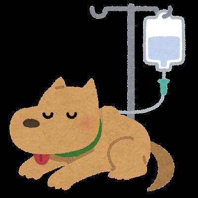 点滴を受ける犬のイラスト
