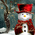 #25th Merry Xmas / Christmas 2016 Wishes | Happy Christmas SMS | Messages | Quotes in English !!