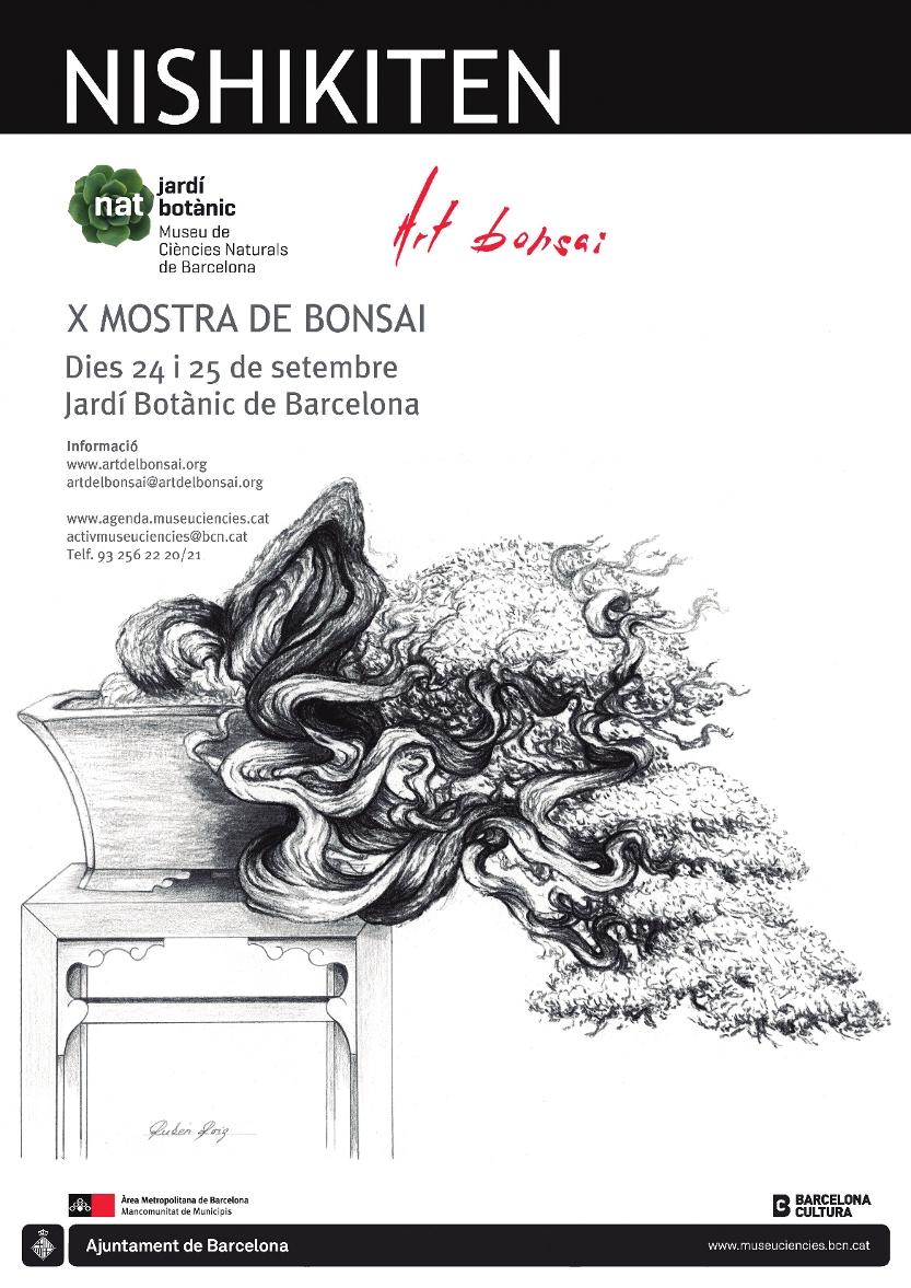 nostromo bonsai  septiembre 2011