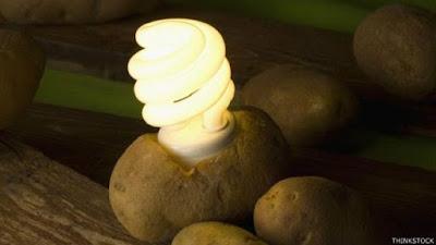 Batata com fonte de energia elétrica