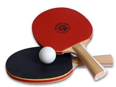 vợt bóng bàn cao cấp