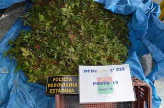 http://vnoticia.com.br/noticia/1427-casal-e-flagrado-extraindo-ilegalmente-sementes-de-aroeira-em-sfi