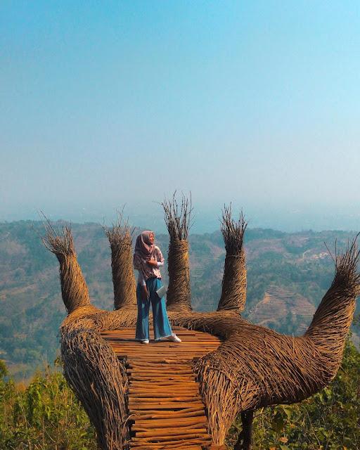 Pinus pengger masih menjadi top Selfie Jogja 2019