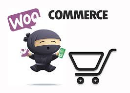 Is WooCommerce Good for Struggling Entrepreneurs