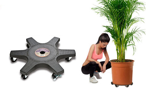 Plant Pot Caddies With Wheels