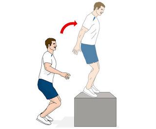 hamstring,hamstring workouts,front box jump