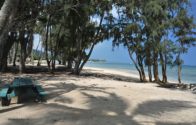 Cruisin   Oahu s  other North Shore :  A scenic drive that won t drive you crazy