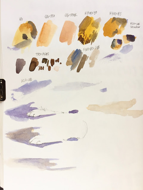 Daily Art 09-23-17 color and brushmark practice for bunny studies in Strathmore 500 Mixed Media Journal